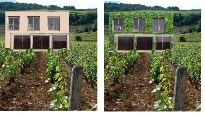Maison dans les vignes : ch2