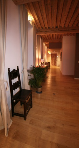 Appartemant type Canut : appartement-croix-rousse-2