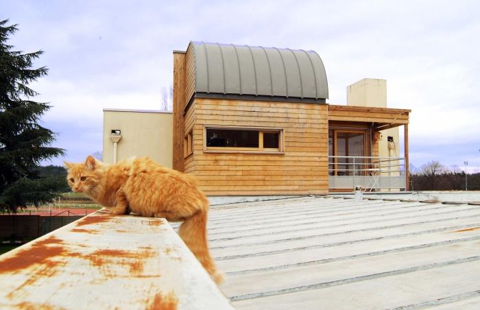 Extension maison individuelle bois : image_projet_mini_37630