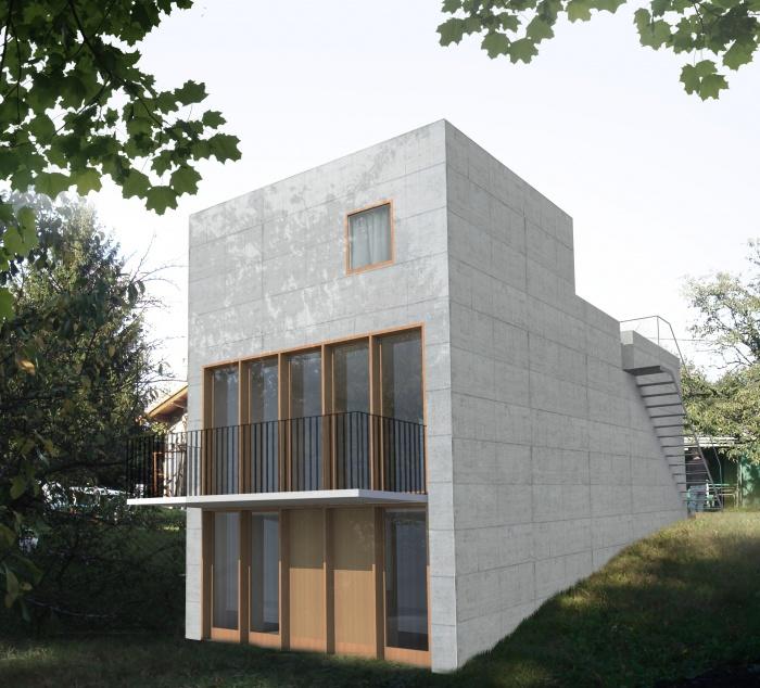 Maison avec toit jardin